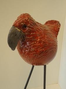 rood gevogelte detail